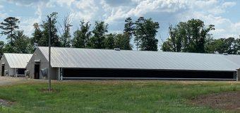 В США запустили крупнейшую птицефабрику на солнечных батареях